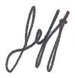 Jeff Sign2